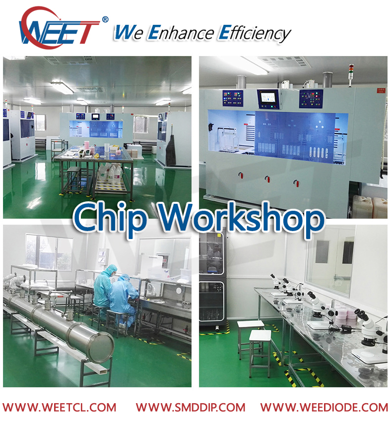 WEET Wafer Chip Workshop For Transient Voltage Suppressors and Most Diodes Rectifiers GPP Chips